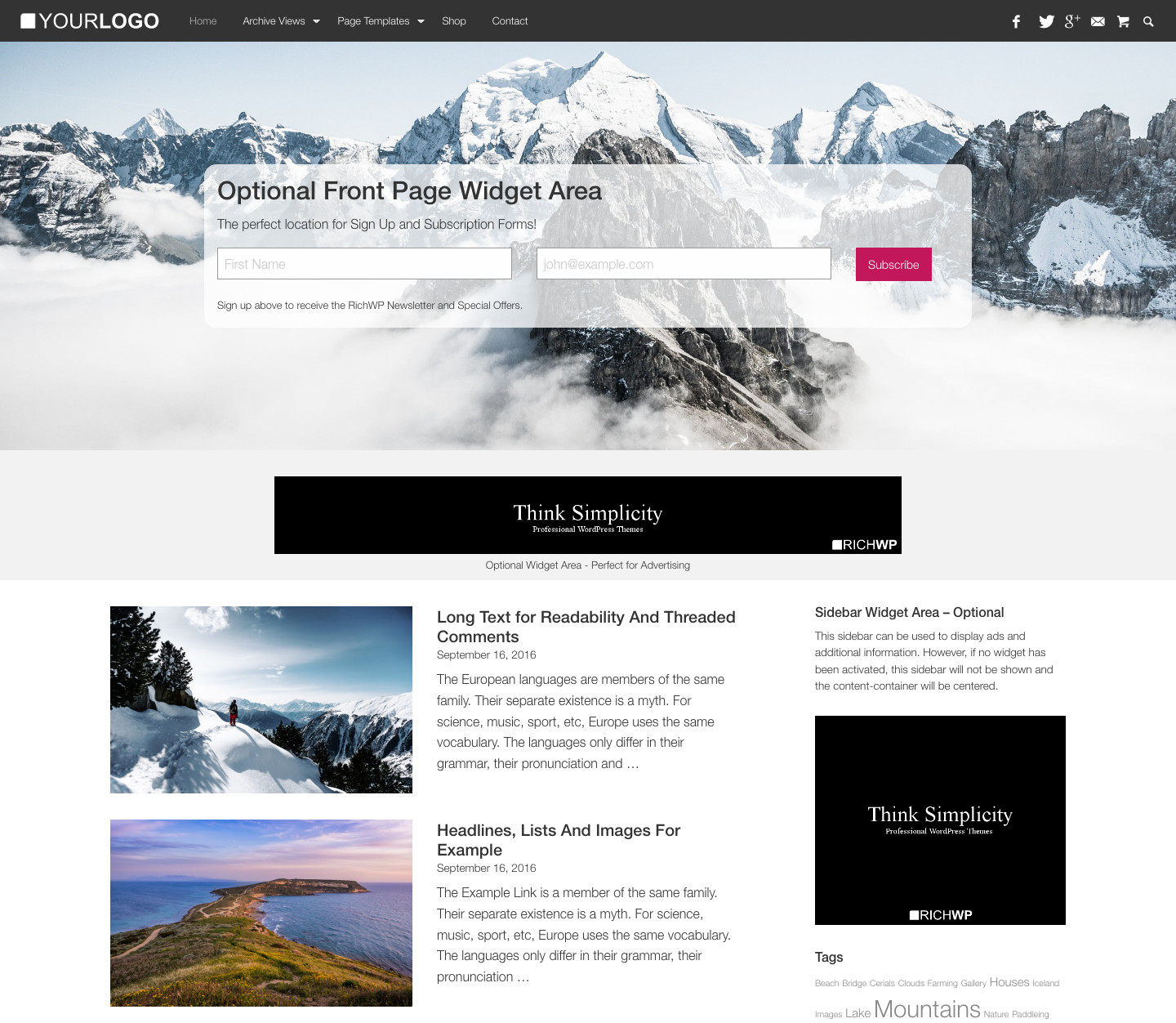 Rich Master WordPress Theme