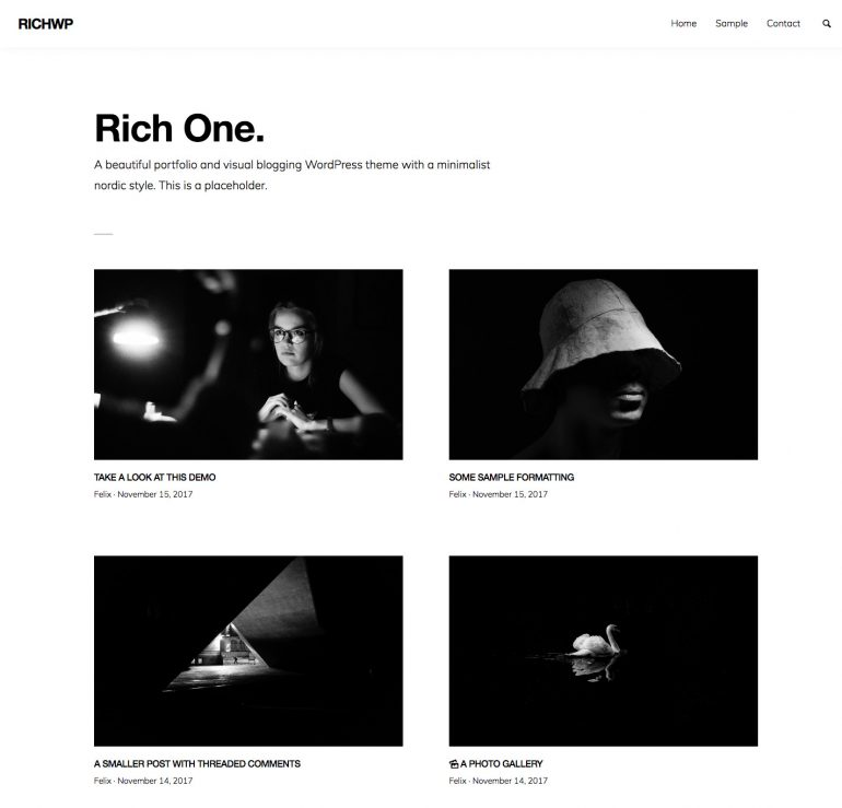 RichOne WordPress Portfolio Theme