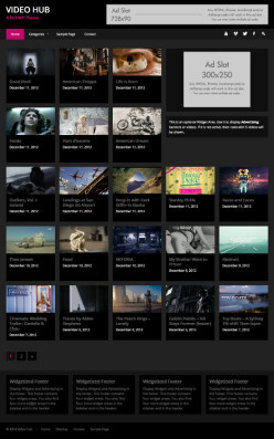 WordPress Video Theme - Video Hub