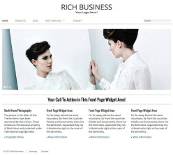 Rich Business - WordPress Business Theme