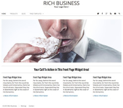 WordPress Business Theme - Rich Business