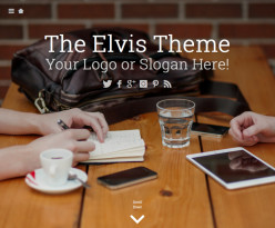 Trendy WordPress Theme - Elvis