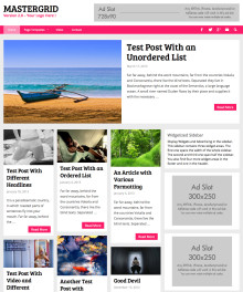 WordPress Grid Theme - MasterGrid