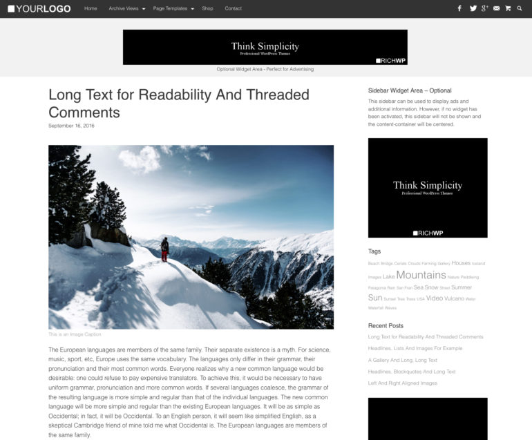 Single Post View | RichMaster - Professional & Personal WordPress Blog Theme
