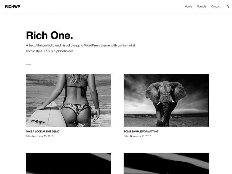RichOne: WordPress Portfolio Theme