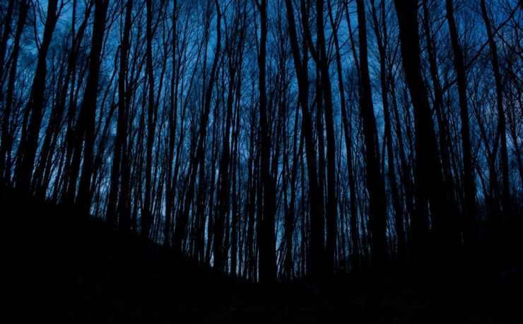 Feature Creep in WordPress Themes